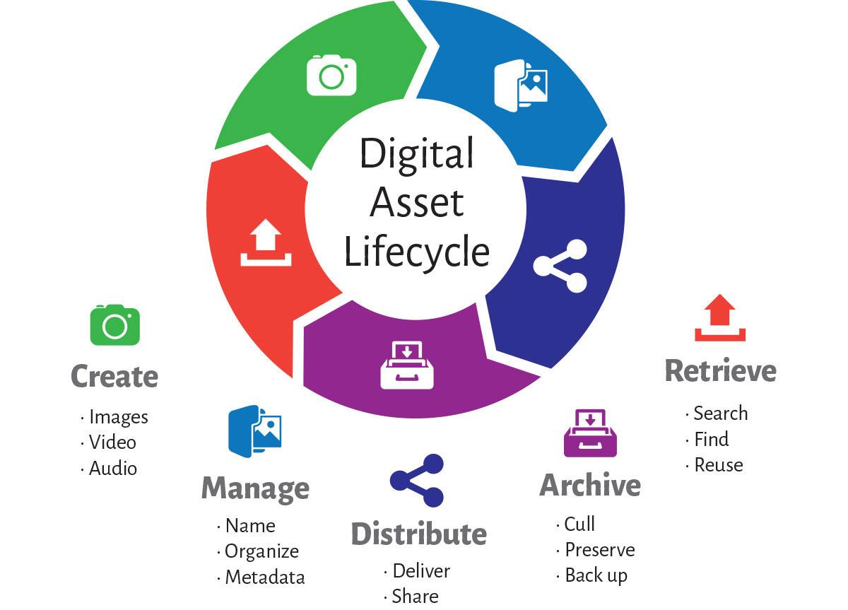 چرخه عمر دارایی دیجیتال